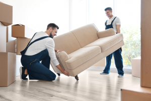 furniture-movers